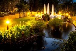 Twilight fountain in night garden