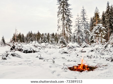 Twilight in the forest. Snow around and only campfire lets survive tough time.