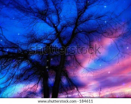 Twilight pastels photo-art .Dreamy winter scene.Neat close up , it looks like real pastels .