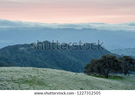 Twilight Views of Mount Diablo from BBQ Terrace Road. Mount Diablo State Park, Contra Costa County, California, USA.