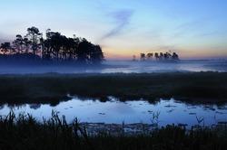 Twilight with Fog Over Salt Marsh