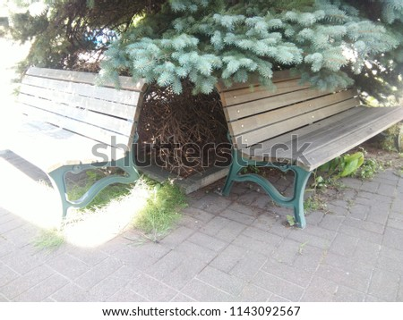 Twin benches but different #1143092567