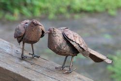 twin copper bird