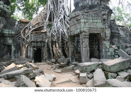 Twin entrances at part of the temple complex at Angkor Wat in Cambodia are overgrown with Banyan trees. - stock photo