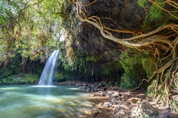 Twin falls wilderness, lush tropical waterfall on the island of maui, Hawaii