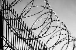 TWISTED BARBED WIRE ON A METAL FENCE. prison fence. black white photo. High quality photo
