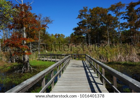 Twisting wooden boardwalk stretches into the Black Bayou Lake National Wildlife Refuge in Monroe, Louisiana.