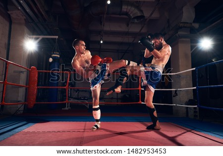 Two adult sportsmen kickboxers exercising kickboxing in the ring at the sport club