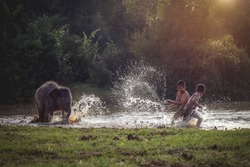 Two Asian boys playing with litle elephant in the stream.