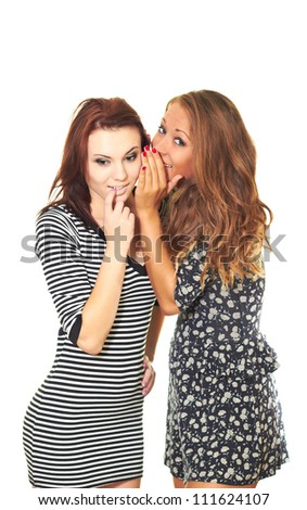 two attractive smiling girl in a dress tell each other secrets. Isolated on white background