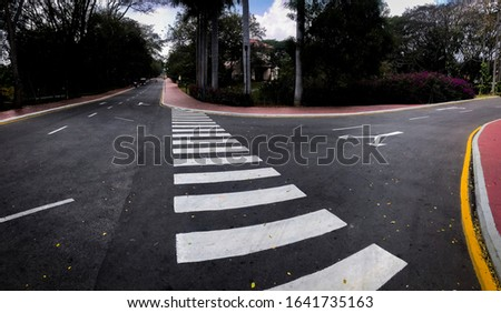 Two beautiful city roads with zebra crossing diverging and splitting in autumn, indicating indecision, doubt,uncertainty and the road not taken.