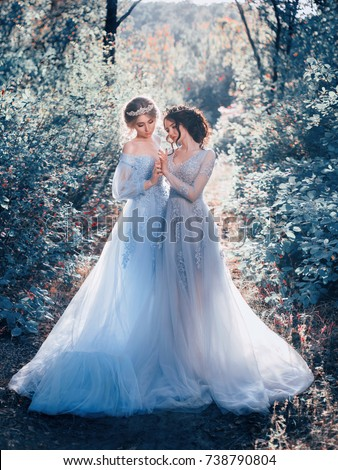 Stock Photo Two beautiful princess girls are walking in luxurious dresses with a long train. The background is beautiful nature in cold winter, artistic tones. Fairytale Photography