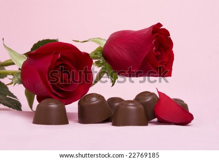 Two beautiful red roses with chocolates on a pink background