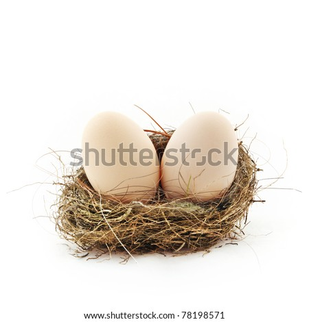 Two big eggs inside the small nest, isolated on white