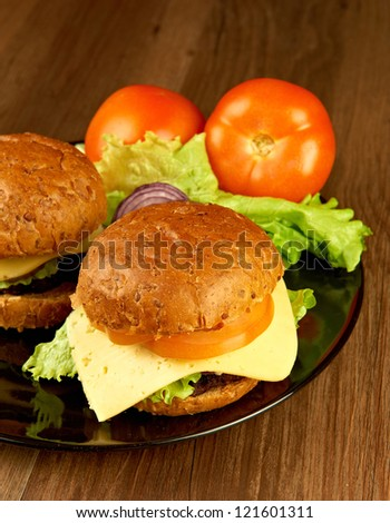Two big hamburgers on the plate