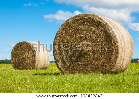 Two big hay bale rolls in a lush green field and blue sky