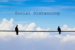 two birds on electricity wire concept of social distancing
