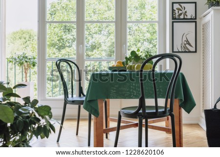 Two black chairs standing by dining table with apples, lemons, fresh plant and green tablecloth in real photo of bright room interior with two posters and balcony with view