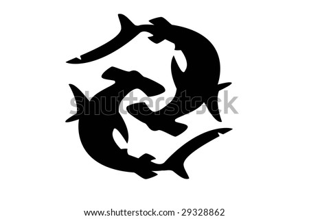 stock photo : two black hammerhead sharks