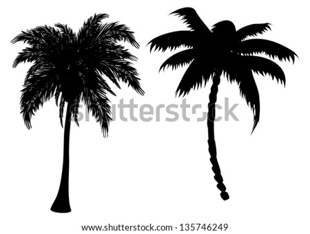 Palm Trees Background Black And White Two Black Palm Tree