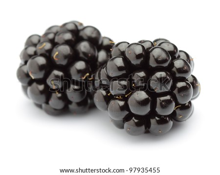 Two blackberries on a white background