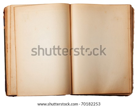 blank pages of a book. stock photo : Two lank Pages