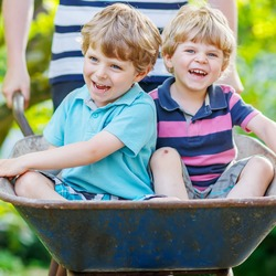 Two blond little boys having fun in a wheelbarrow pushing by father in domestic garden, on warm sunny day. Active outdoors games for kids in summer.