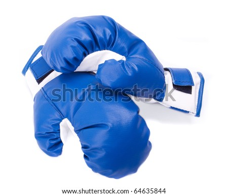 Two Blue Boxing Gloves