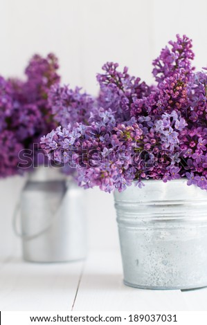 Two bouquet of lilac flowers in zinc pots on a white wooden board, home decor in a rustic style