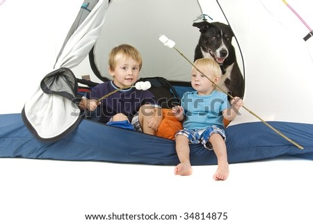 Two boys and dog in tent with marshmallows on sticks - camping or summer holiday theme