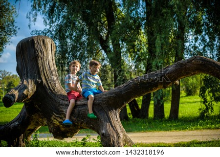 Two boys are sitting on a log. The child walks in the summer park or forest. The kid sits on a fallen tree. Outdoor fun for children.