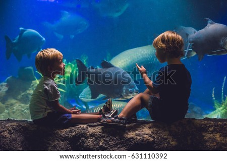 Shutterstock Two boys look at the fish in the aquarium.