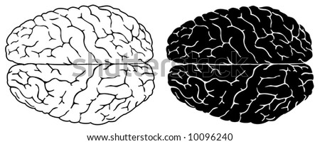 Two brains, normal and black white version