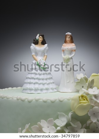 Two bride figurines on top of wedding cake - stock photo