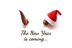 Two brown bull horns break through the white background.On one horn is a Santa Claus hat.Bull as a symbol of the New year 2021.The inscription of a NEW YEAR IS COMING.Creative New Year concept.