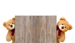 Two brown cute teddy bears sneaked behind the old wooden door isolated on white background. Copy space for text and content.