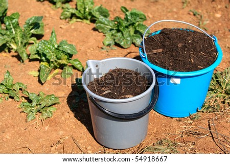 Two buckets full of compost next to a vegetable garden