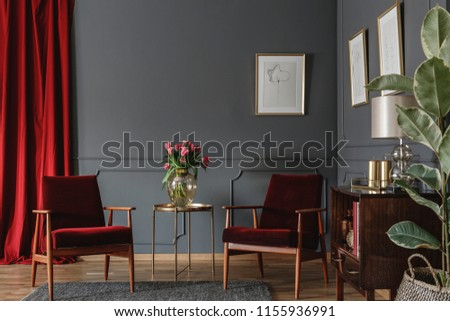 Two burgundy armchairs placed in grey living room interior with red drape. molding on the wall with posters, fresh flowers in glass vase and wooden cupboard