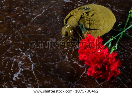 two carnations, a military flask, against the background of the monument, with a place for inscription #1075730462