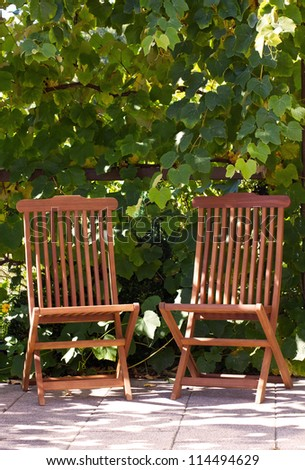 two chairs in the garden/chair/garden