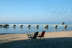 Two chairs on the beach Higgs Pier Rest Area. A man with a bicycle goes on  Higgs Beach Pierand many gulls fly over it. Key West Island; Florida; USA