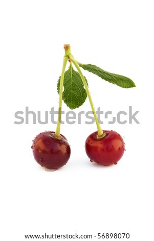 two cherries with drops of dew