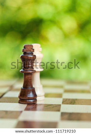 two chess king on the board