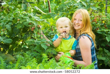 Two  children is picking  raspberry  in the field