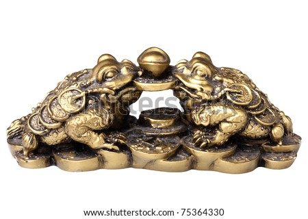Two chinese feng shui frogs with coins. Isolated on white background