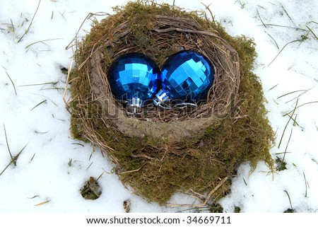 two christmas decorative blue balls in bird nest outdoor at snow
