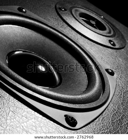 Two close-up speakers