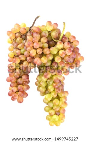 Two clusters of raisin grapes isolated on a white background. Grape raisins radiant. Ripe sweet grapes. #1499745227