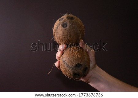 two coconuts in a man's hand on a brown background