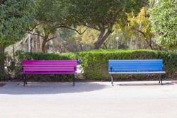 two colored benches in the city park seat for loving couples